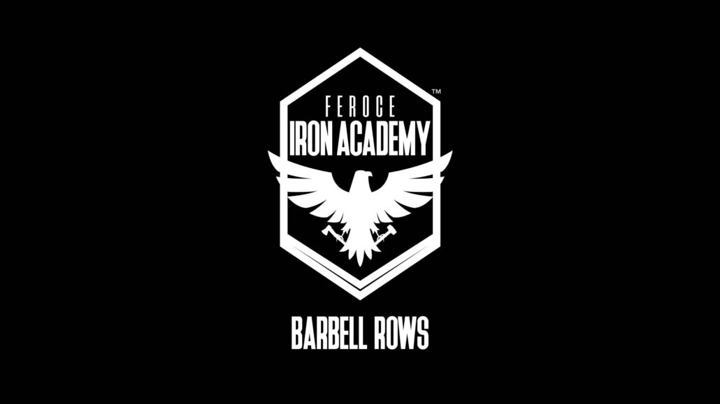 Barbell Rows