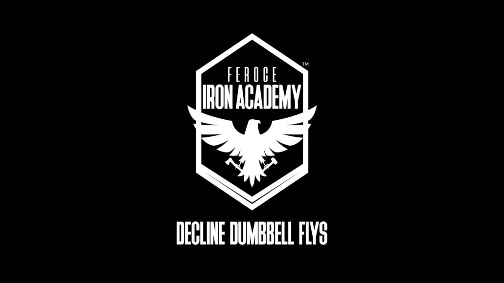 Decline Dumbbell Flys