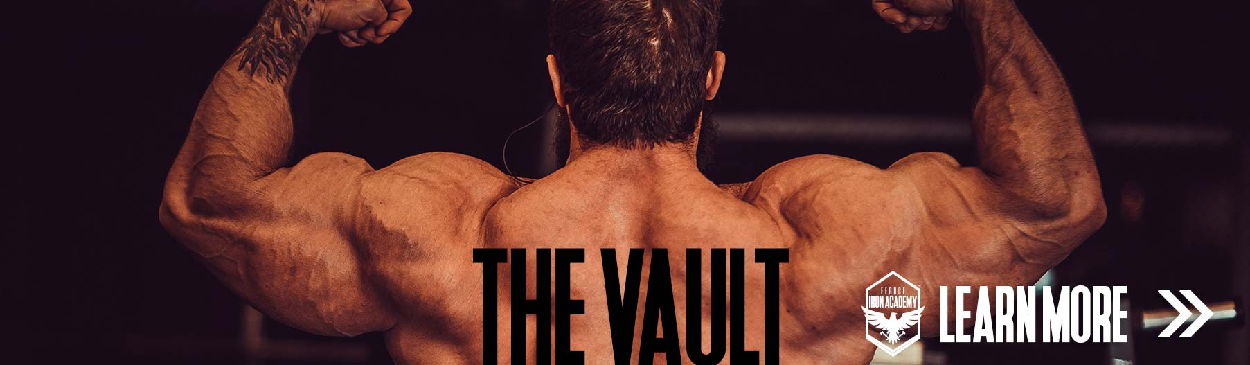 Introducing The Vault